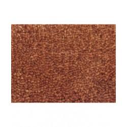 Orange Rust 13048