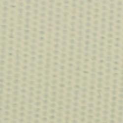 EPEI103 Petunia Ivory 103