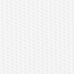 Petunia Romanizado Blanco 091